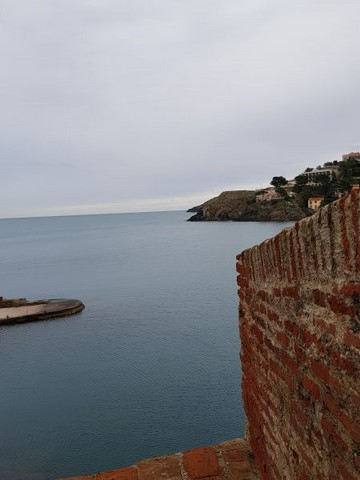 Collioure château royal