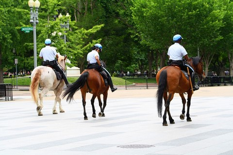 Washington Policier a cheval